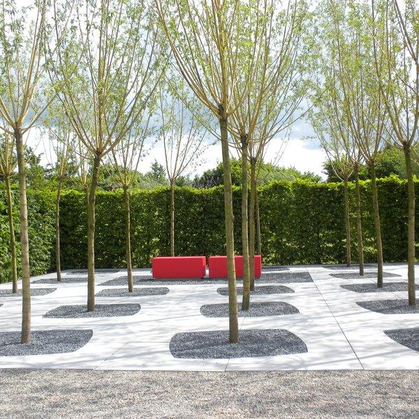 Product image for Encadrement d'arbre Urban Tree Smooth 4 pièces 200x200cm (Lxl)